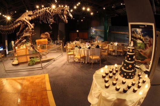 casamento nerd geek parque dos dinossauros