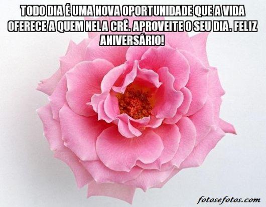 flores-para-aniversario-rosa-linda