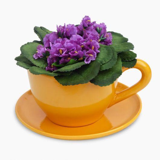 flor barata presente
