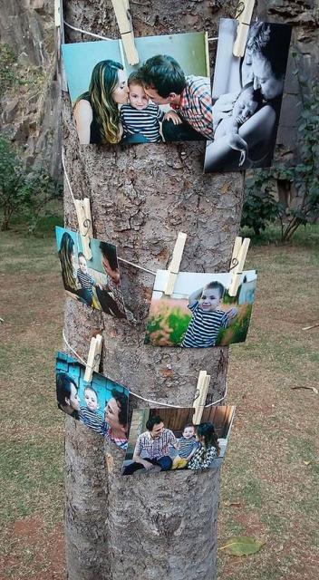tronco de árvore com varal de fotos ao redor em festa piquenique