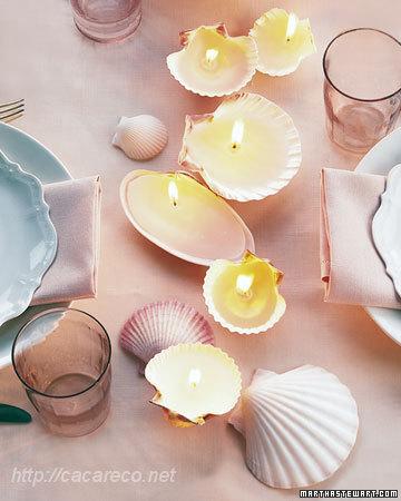 conchas como suporte para velas