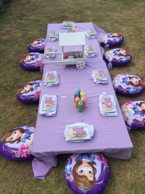 festa princesa sofia dicas para uma decoração inesquecível