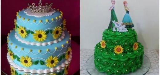 montagem de fotos de bolo Frozen Fever