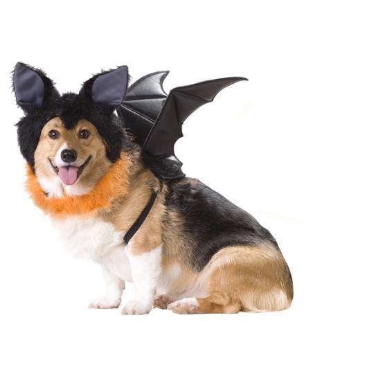 Fantasias para cachorros morcego