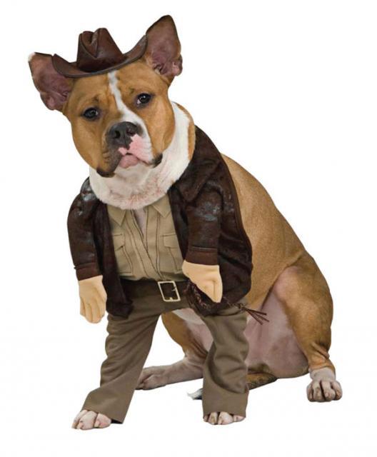 Fantasias para cachorros Cherife