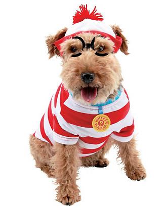Fantasias para cachorros marinheiro