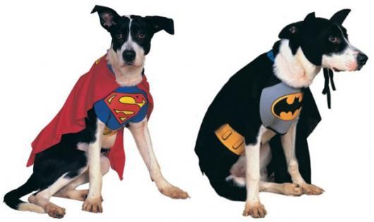 Fantasias para cachorros heróis