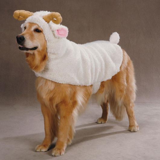 Fantasias para cachorros ovelinha