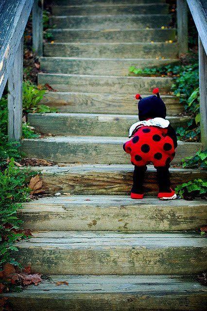 Criança vestida de joaninha, com roupa preta e shortes vermelho com bolinhas pretas.
