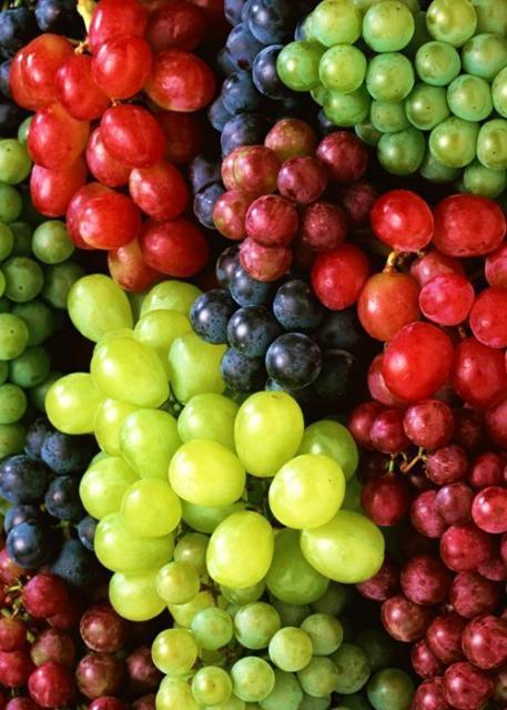 Foto de cachos de uvas de várias tonalidades.