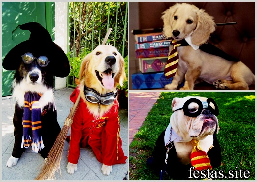 Fantasia Harry Potter modelos para Pet