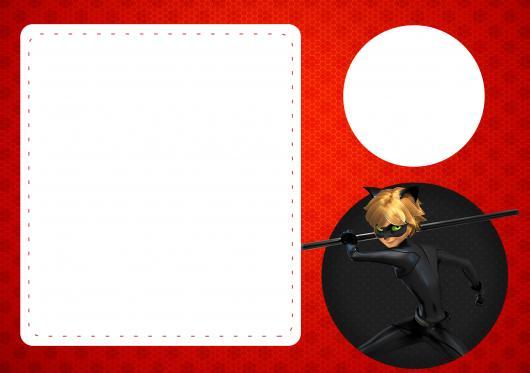 Convites Ladybug com Cat Noir para imprimir grátis
