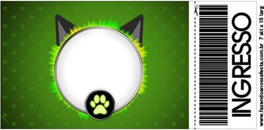 Convite Festa Ladybug e Cat Noir estilo ingresso