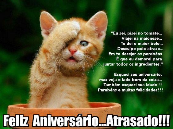 Foto de gatinho com mensagem de aniversário atrasado.