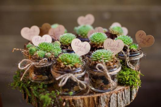 Vidrinhos com plantinhas e coração para decorar
