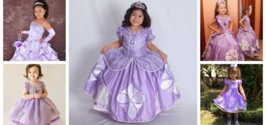Montagem com cinco modelos de fantasia Princesa Sofia.