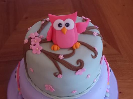 festa da corujinha bolo rosa