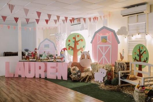 Festa fazendinha rosa decoração rústica com display