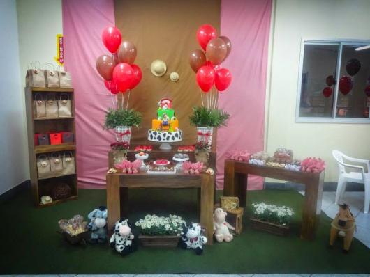 Festa fazendinha rosa decoração simples com tecido