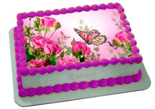 Bolo de borboleta: Com papel de arroz