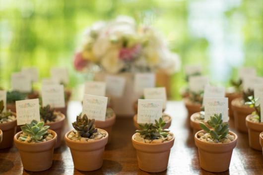 Mini wedding: suculenta lembrancinha