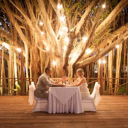 Mini wedding: decoração rústica com árvore iluminada