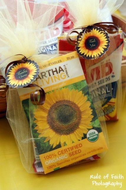 Kit para planta girassol