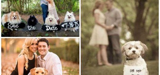 Ideias para Pré Wedding