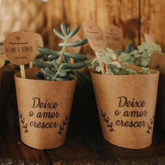 planta como lembrancinha de casamento