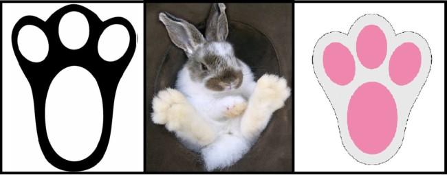 desenhos de patas de coelho