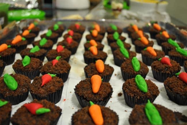 cupcakes plantação