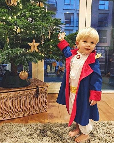 Fantasia de pequeno príncipe como fazer