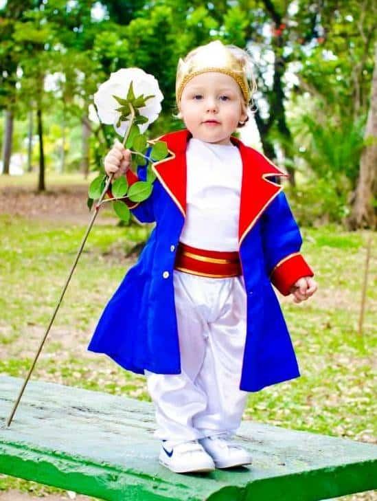 Fantasia de pequeno príncipe luxo