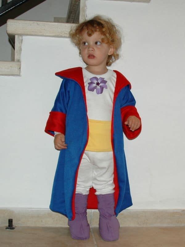 Fantasia de pequeno príncipe requintada