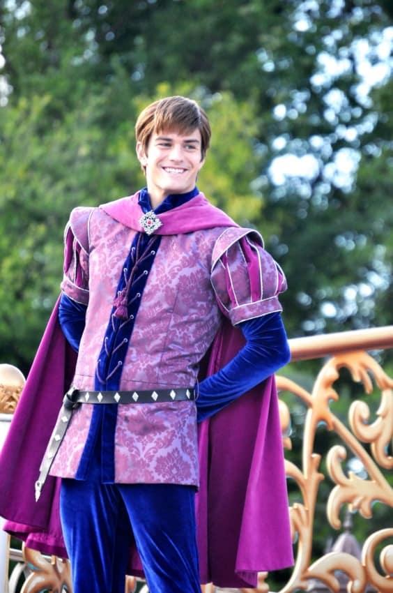 Fantasia de príncipe chique