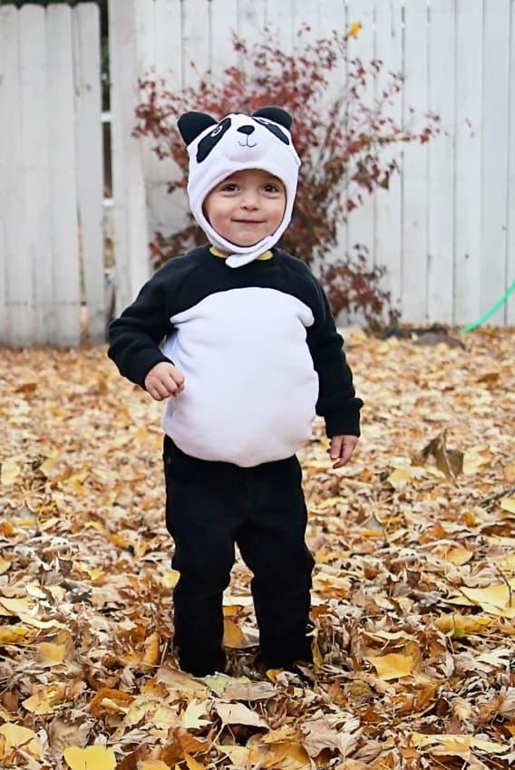 fantasia infantil com gorro de panda