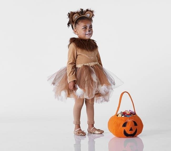 Dica de fantasia de leaozinho para o Halloween