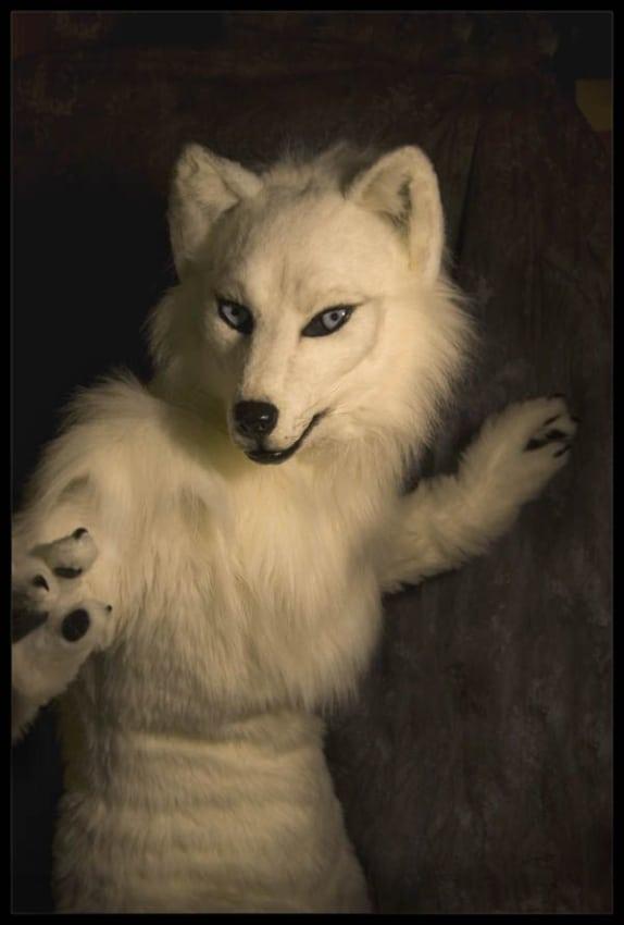 fantasia realista de lobo branco