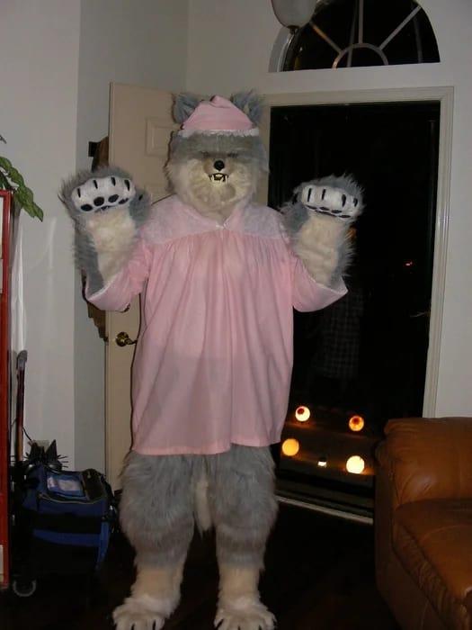 fantasia de lobo mau com roupas da vovozinha